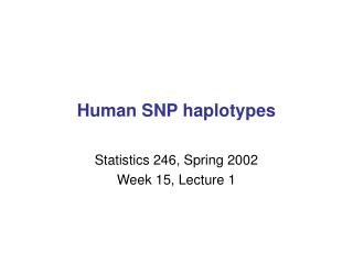 Human SNP haplotypes