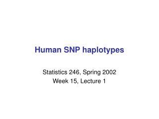 Human SNP haplotypes