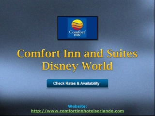 Comfort Inn and Suites Disney World