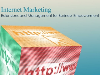 Internet Marketing - Extensions and Management for Business