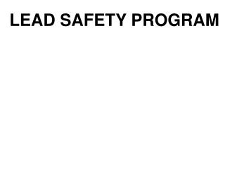 LEAD SAFETY PROGRAM
