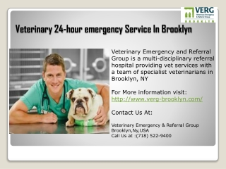 Veterinary 24-hour emergency Service In Brooklyn