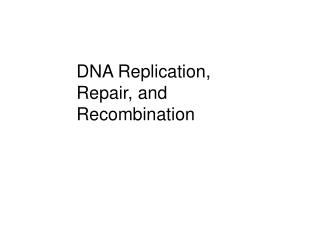 DNA Replication, Repair, and Recombination