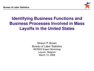 Identifying Business Functions and Business Processes Involved in Mass Layoffs in the United States