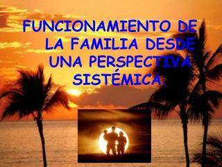 FUNCIONAMIENTO DE LA FAMILIA DESDE UNA PERSPECTIVA SIST MICA.