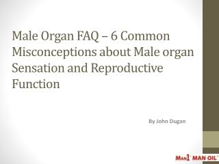 Male Organ FAQ – 6 Common Misconceptions