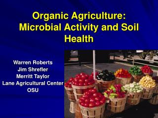 Organic Agriculture:  Microbial Activity and Soil Health