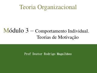 Teoria Organizacional   M dulo 3   Comportamento Individual. Teorias de Motiva  o   Prof Doutor Rodrigo Magalh es