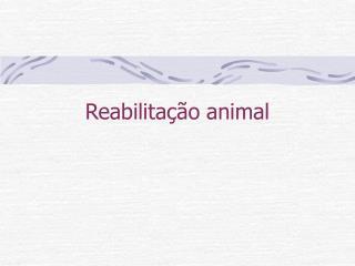Reabilita  o animal