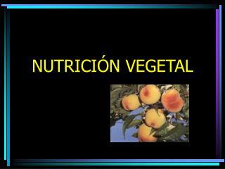 NUTRICI N VEGETAL