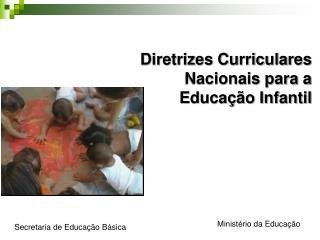 Perspectivas da atualiza  o das Diretrizes Nacionais Curriculares para a Educa  o Infantil