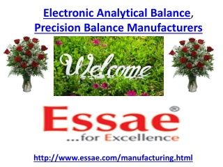 Electronic Analytical Balance, Precision Balance Manufacture