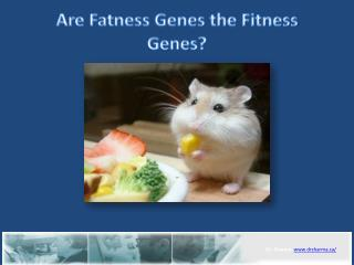 Are Fatness Genes the Fitness Genes?