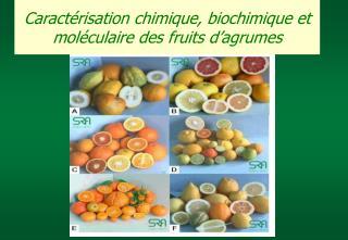 Caract risation chimique, biochimique et mol culaire des fruits d agrumes