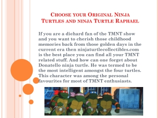 Choose your best Raphael and Donatello Ninja Turtles
