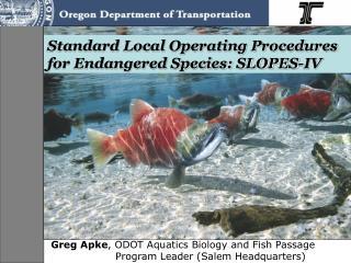 Standard Local Operating Procedures for Endangered Species: SLOPES-IV