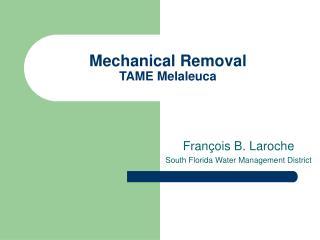 Mechanical Removal TAME Melaleuca