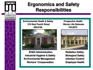 Ergonomics and Safety Responsibilities
