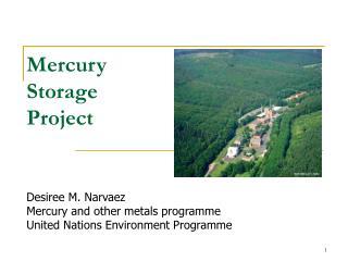 Mercury  Storage  Project