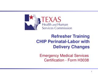 Refresher Training CHIP Perinatal-Labor with Delivery Changes