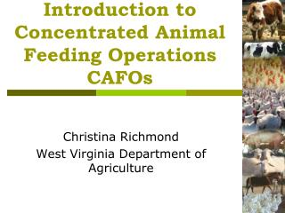 Introduction to Concentrated Animal Feeding Operations  CAFOs