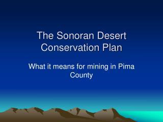The Sonoran Desert Conservation Plan