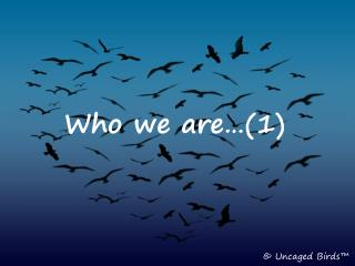Who We Are...Noah Sow