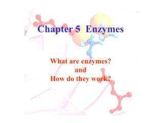 Chapter 5  Enzymes  What are enzymes and  How do they work
