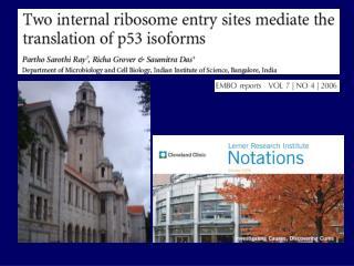 Presenta varias isoformas  N-p53 carece dominio N terminal      40