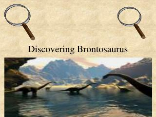 Discovering Brontosaurus