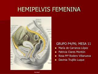 HEMIPELVIS FEMENINA