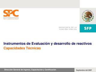 Instrumentos de Evaluaci n y desarrollo de reactivos Capacidades T cnicas