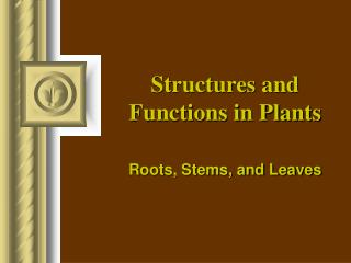 Structures and Functions in Plants