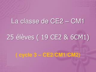 La classe de CE2   CM1  25  l ves  19 CE2  6CM1