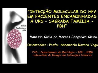 DETEC  O MOLECULAR DO HPV EM PACIENTES ENCAMINHADAS    URS   SAGRADA FAM LIA - PBH