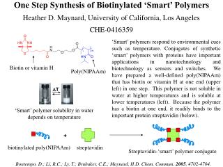 One Step Synthesis of Biotinylated  Smart  Polymers Heather D. Maynard, University of California, Los Angeles CHE-041635