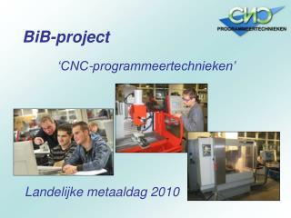 BiB-project
