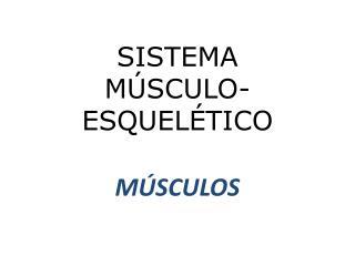 SISTEMA M SCULO-ESQUEL TICO