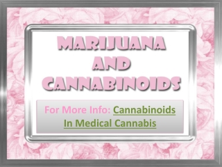 Marijuana And Cannabinoids
