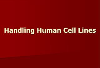 Handling Human Cell Lines