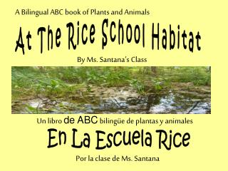 At The Rice School Habitat