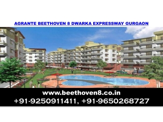 Agrante Beethoven 8 Call Us +91-9650268727
