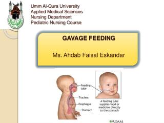 Umm Al-Qura University  Applied Medical Sciences  Nursing Department Pediatric Nursing Course