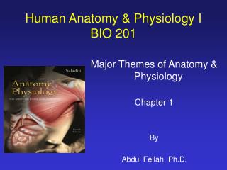 Human Anatomy  Physiology I BIO 201
