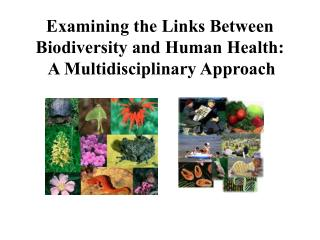 Examining the Links Between Biodiversity and Human Health:   A Multidisciplinary Approach
