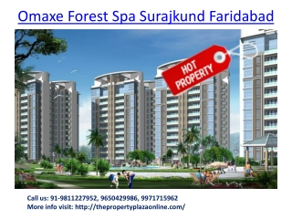 Omaxe Residential Project Faridabad