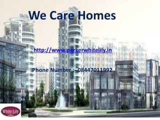Parker White Lily Sonepat – Call 844-701-1992