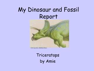 My Dinosaur and Fossil Report