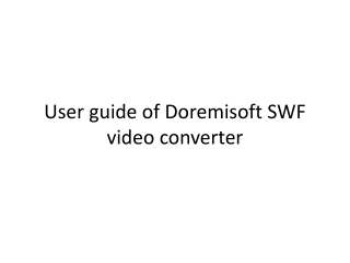 Doremisoft SWF Video Converter User Guide-How to convert swf