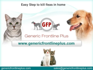 Easy Step to kill fleas in home
